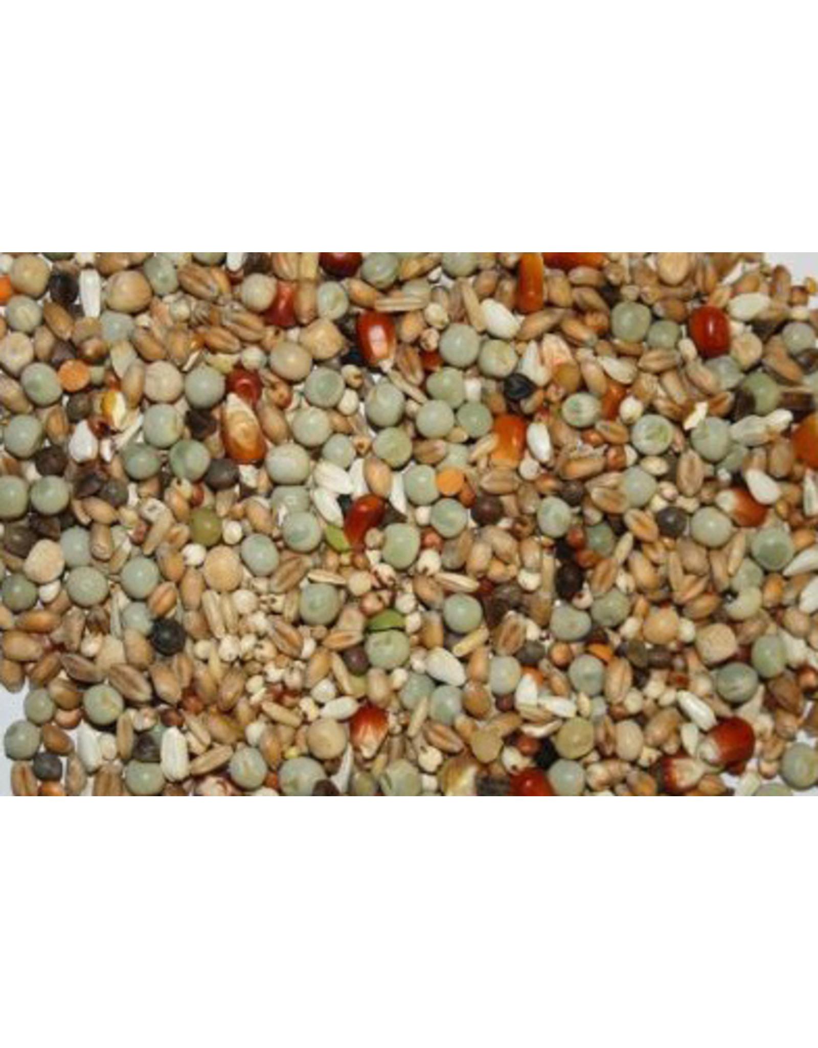 Spinne Jungtauben perlmais - 25 KG