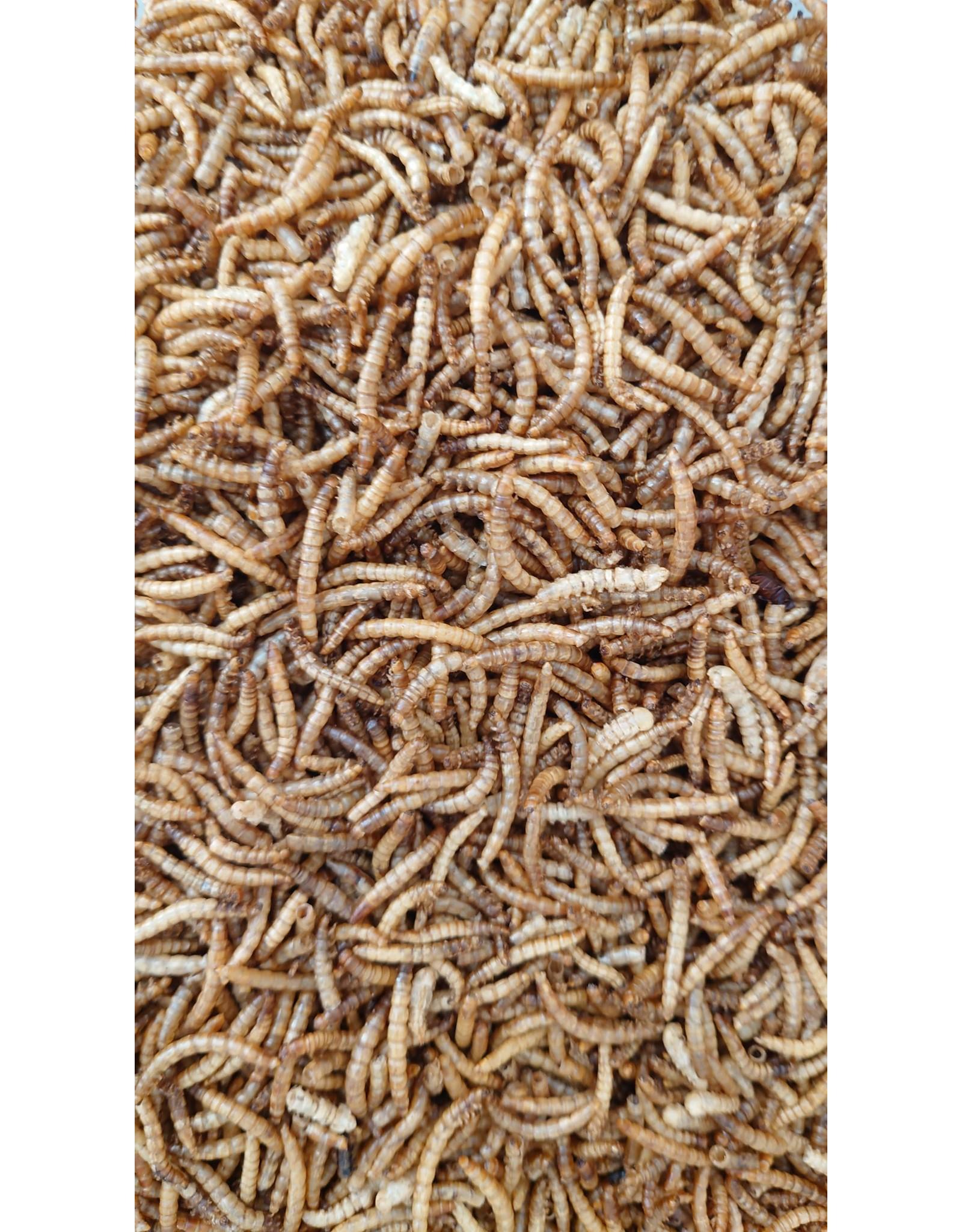 Eigen merk Meelwormen Gedroogd - 2,5 Liter