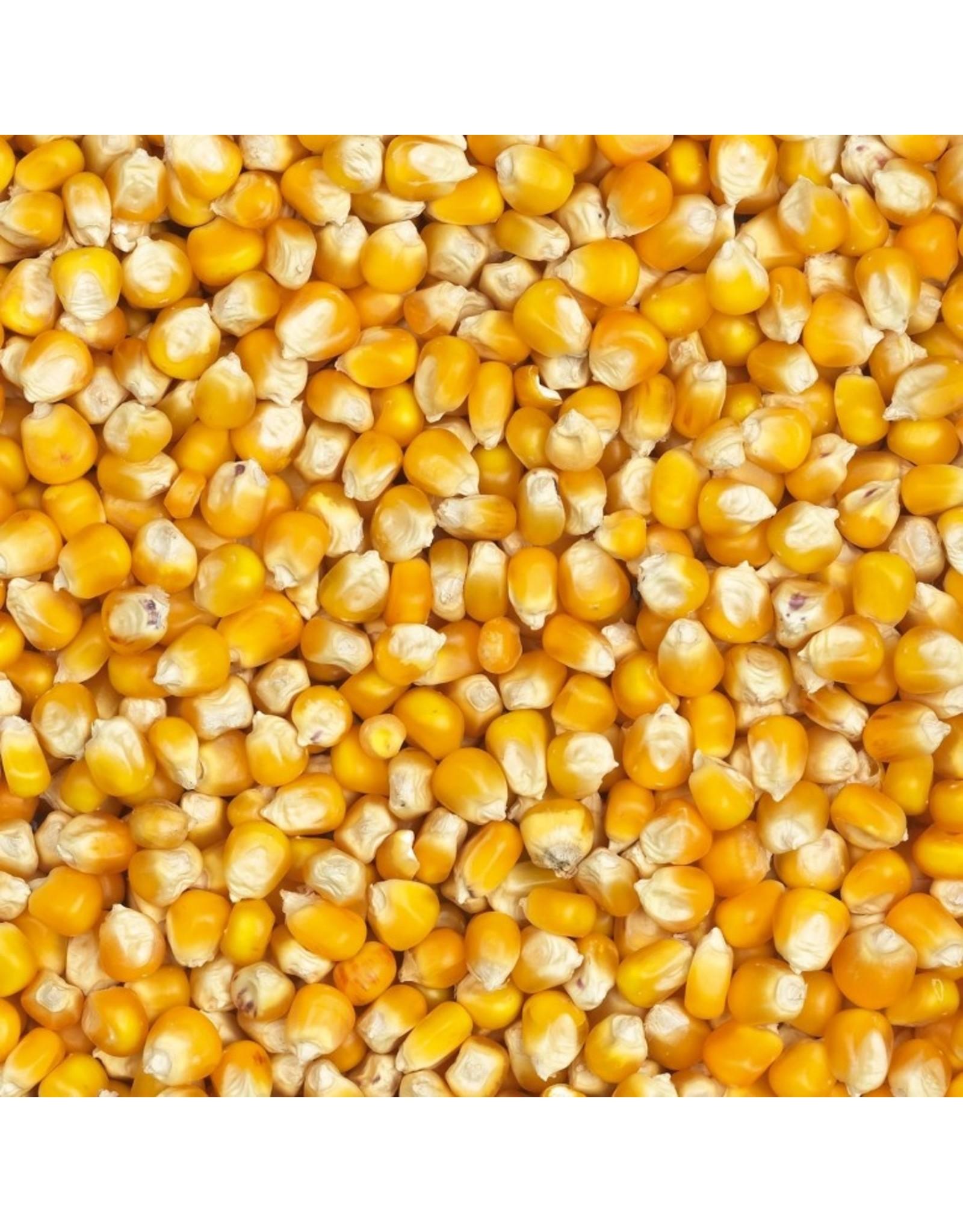 Losse zaden Nr 78 Cribs Mais - 25 KG