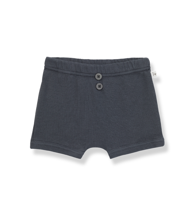 1 + in the family Sebastian culotte anthracite