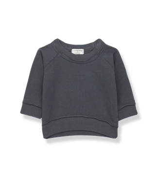 1 + in the family Tristan sweatshirt Anthracite