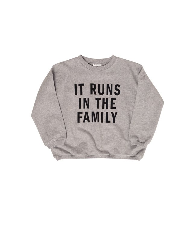 Maed for mini It runs in the family sweater