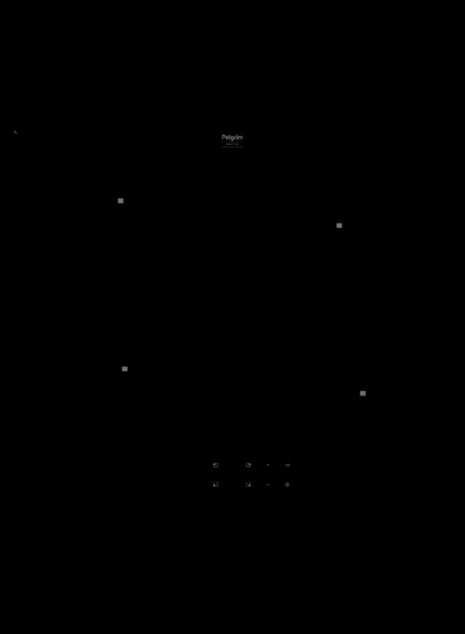Pelgrim IK1164 inductie kookplaat 60 cm