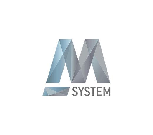 M System
