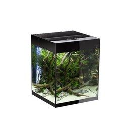 AquaEl GLOSSY CUBE NOIR led 2x10w 50x50x63cm 13 vendu sans filtre/chauffage