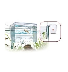 Wave/Amtra PONDOIR EXTERNE fish hatchery AMTRA