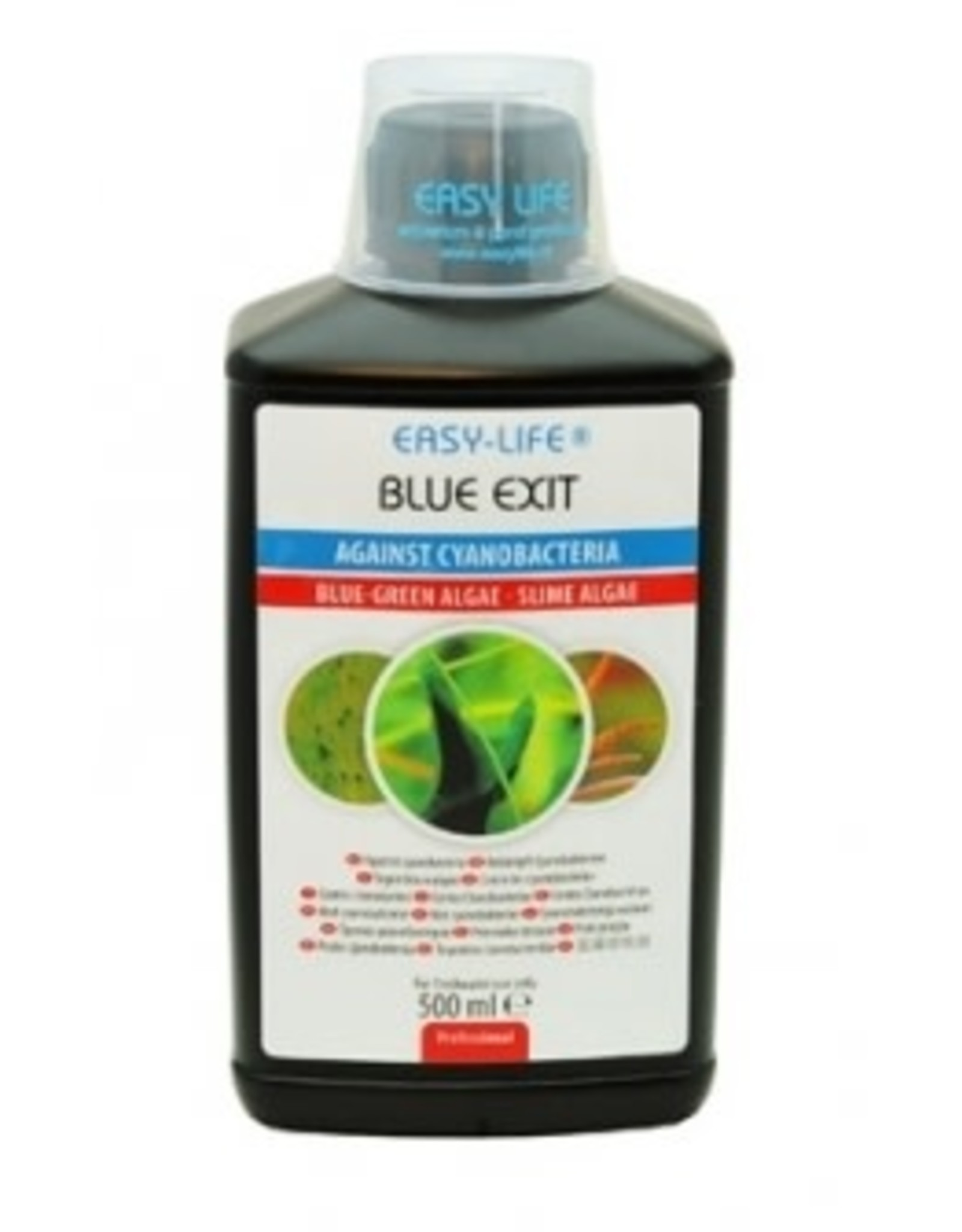 Easy Life BLUE EXIT