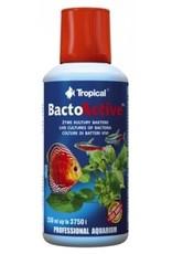 Tropical BACTO ACTIVE 250ml