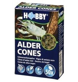 Hobby ALDER CONES 50pc HOBBY (sur commande)