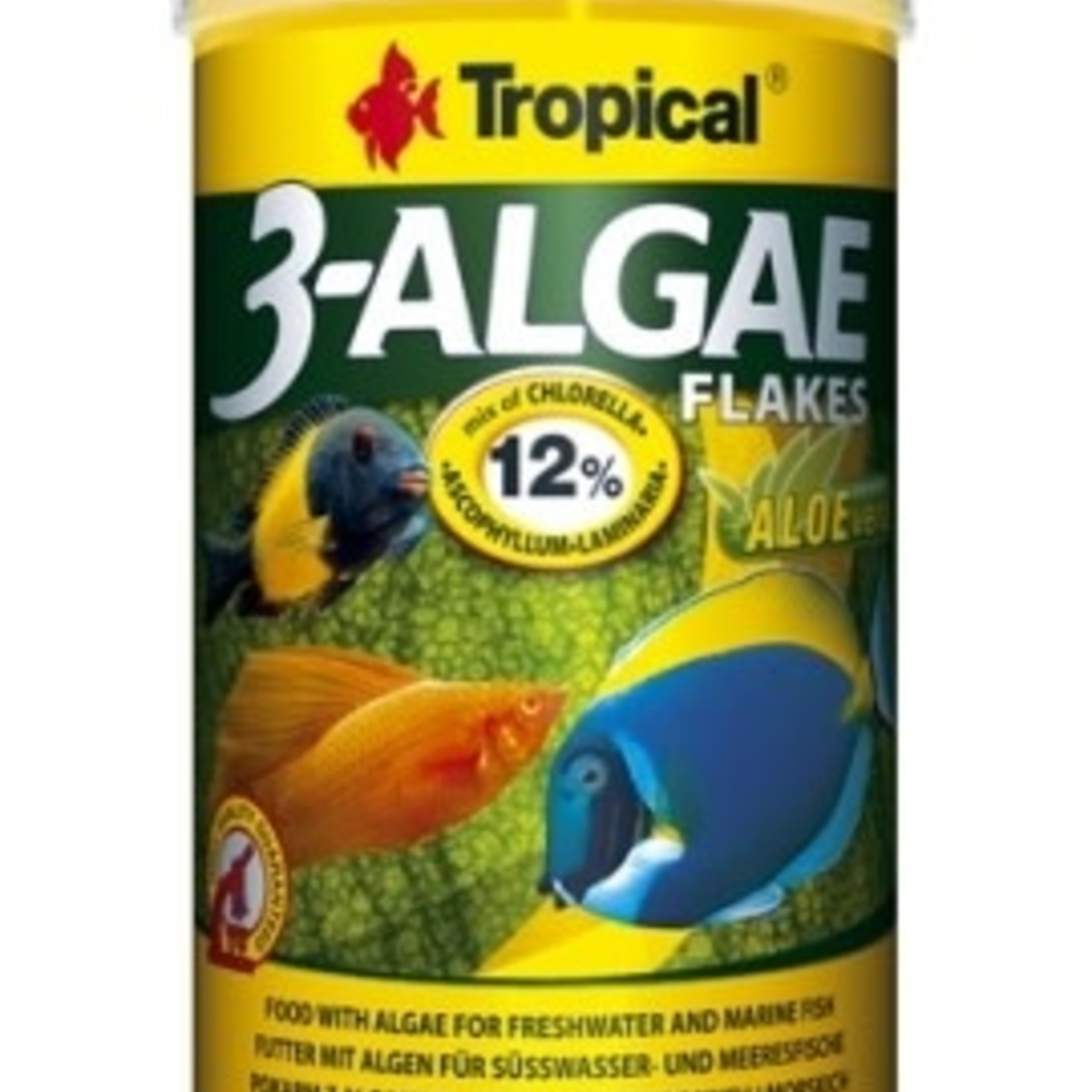 Tropical ALGAE