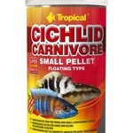 Tropical CICHLID CARNIVORE