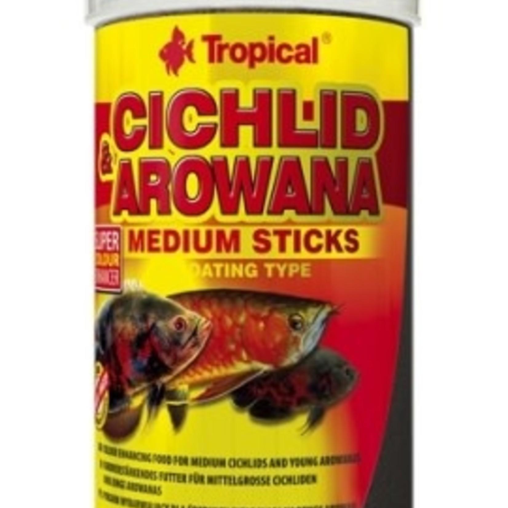 Tropical CICHLID & AROWANA