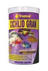 Tropical CICHLID GRAN