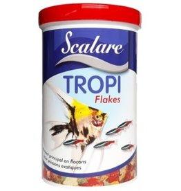 Scalare TROPI FLAKES SCALARE
