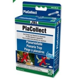 JBL Piege a planaire - PLA COLLECT JBL