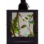 Zoomed NANO BREEZE (terrarium insecte) ZOOMED