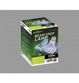 ReptiZoo Lampes chauffante Beam Spot 60w-100w
