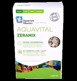 Aquarium Munster Zeranix