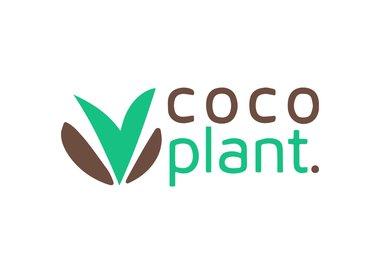 Coco Plant