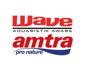 Wave/Amtra