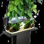AquaEl Versa Garden + groene muur