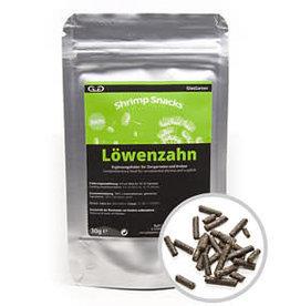 GlasGarten Lowenzahn - Paardebloem