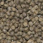Ocean Nutrition Cichlid Omni Pellet (S-M)