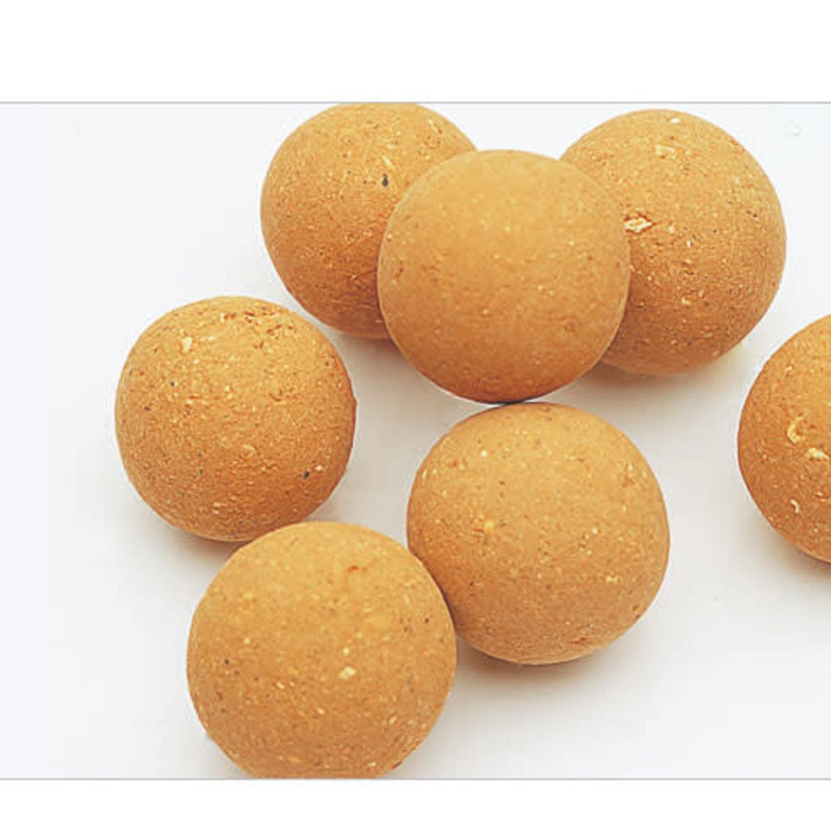ADA Bacter Ball (18 pcs.)