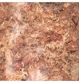 Produits naturels Dried sphagnum