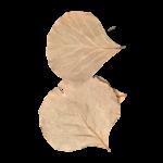 Produits naturels Velvet sheets