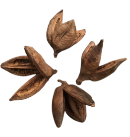 Produits naturels Sororoca