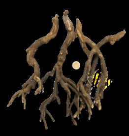 Produits naturels Terra Branch Bush (100gr)