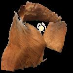 Produits naturels Fibres de Palmier