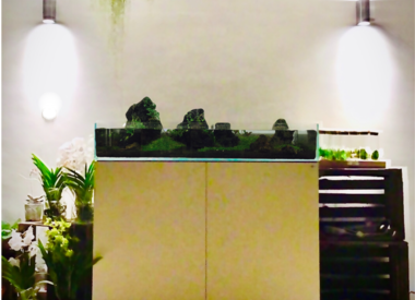 Design intérieurs