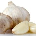 BioFishFood Garlic - Garlic