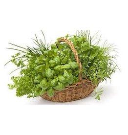 BioFishFood Herbal
