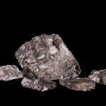 Fossiele steen