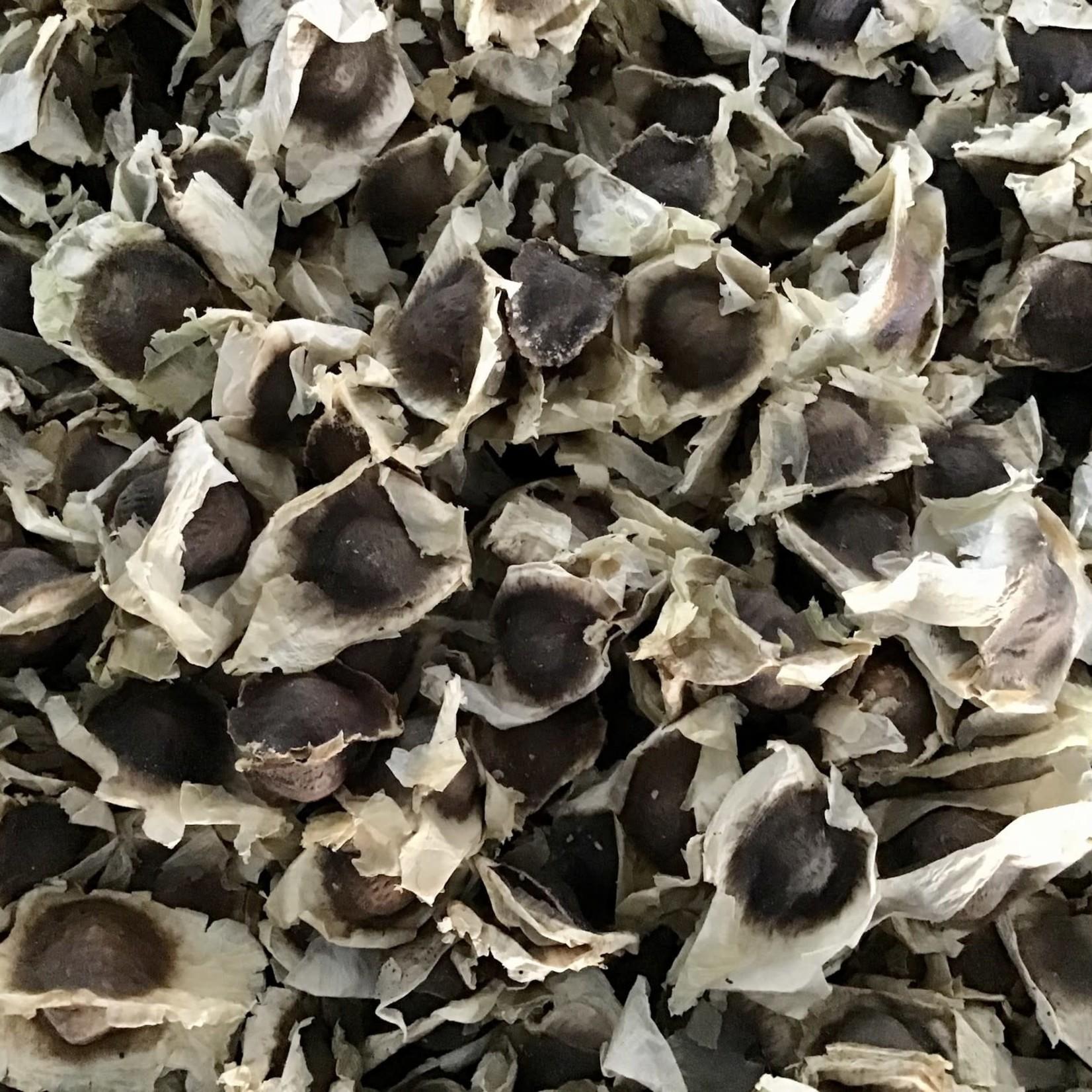 Produits naturels Graines de Moringa