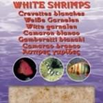 Ocean Nutrition White prawns