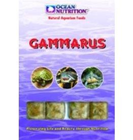 Ocean Nutrition Gammares