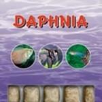 Ocean Nutrition Daphnia