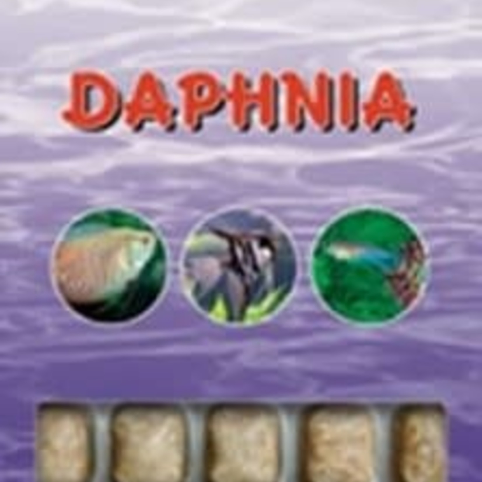 Ocean Nutrition Frozen daphnia