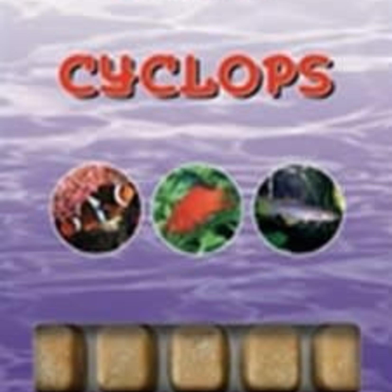 Ocean Nutrition Bevroren cyclopen