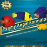 Ocean Nutrition Pigmy Angel-formule