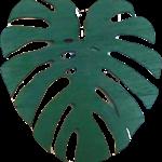 NLS Monstera wood leaf