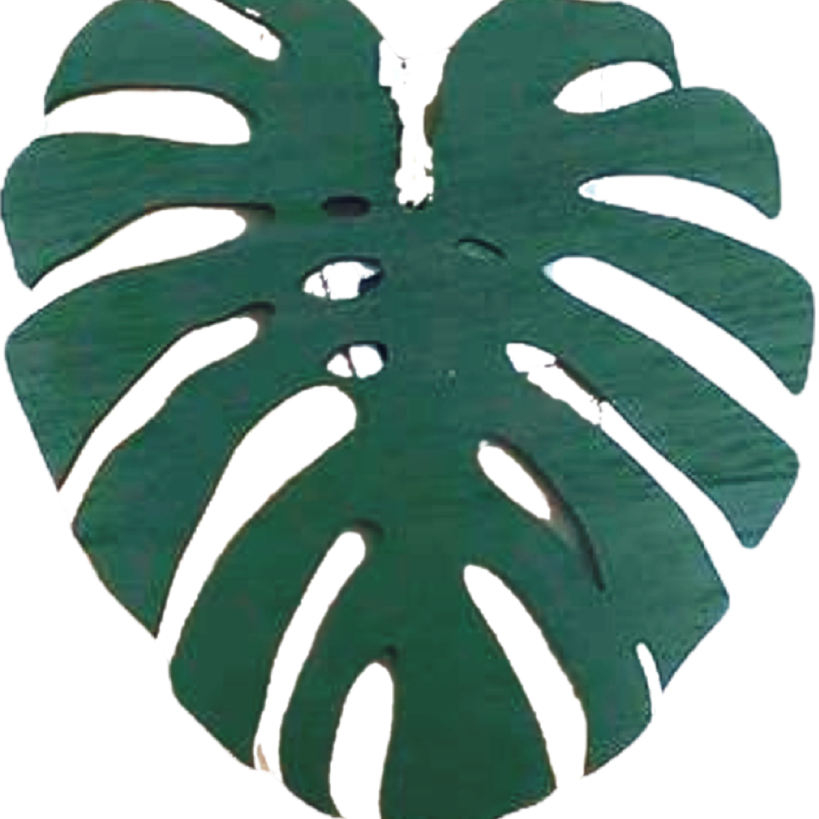 NLS Monstera houten blad (14cm)