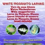 Ocean Nutrition White mosquito larvae - white bloodworms