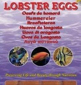 Ocean Nutrition Kreeft eieren
