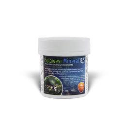 Salty Shrimp Sulawesi Mineral pH 8.5