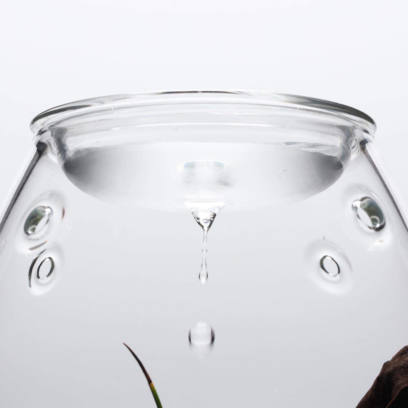 DOOA Glazen Pot SHIZUKU